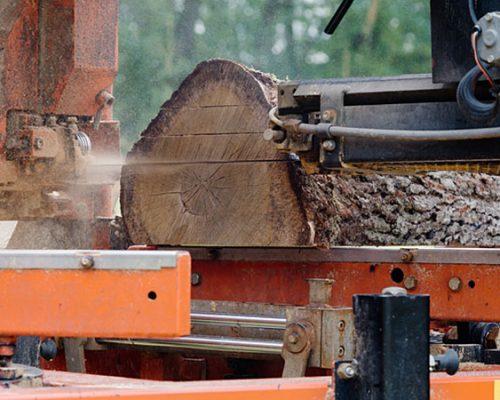 MOBILES LOHNSÄGEWERK / Wood-Mizer / LT40